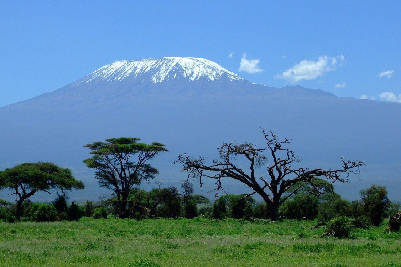 vomite.com/kilimanjaro